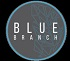 Blue Branch Job Application